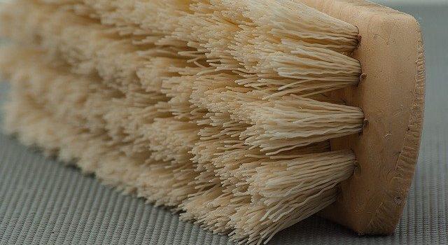 Le brossage a sec : le nettoyage anti toxine gratis !